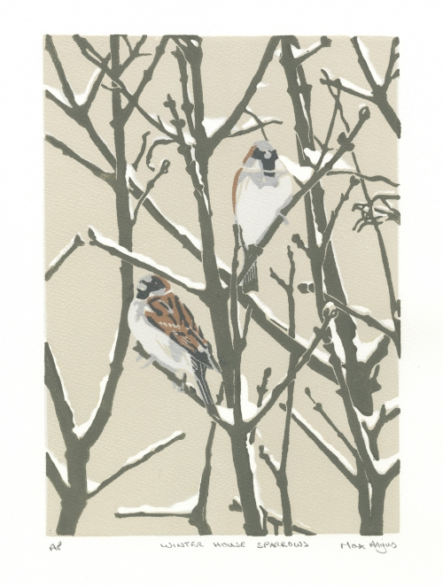 Winter House Sparrows by Max Angus SWLA Art Click and Buy Collection
