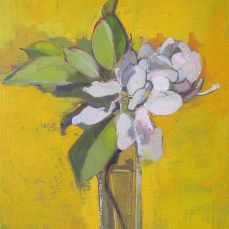 """""""Apple Blossom"""" Oil on Canvas by Eve Pettitt"""""""
