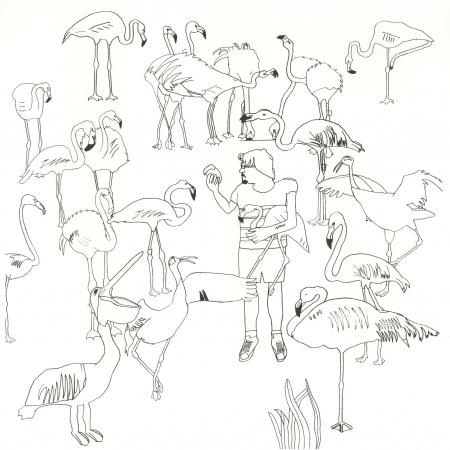WEB flamingo family.jpg