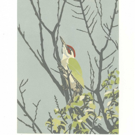 'The Green Woodpecker' linocut by Max Angus SWLA