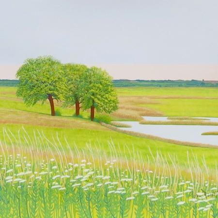 Elmey by Janet Darley