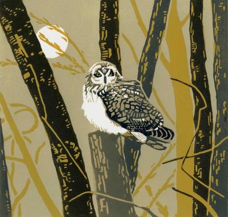 Angus-Max-The-Reverist-Owl.jpg