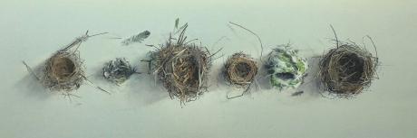 August-Lillias-Empty-nests.jpg