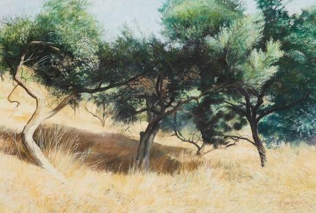 Crittenden-James-Olives-in-Summer.jpg
