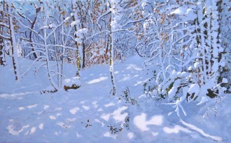 Macara-Andrew-November-Snow-Allestree-Woods-Derby.jpg