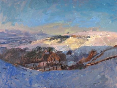 Pikesley-Richard-Snow-fields-&-rising-moon-Dorset.jpg