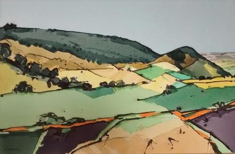 Priddey-Niger-Hergest ridge, summer.jpg