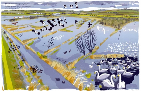 Akroyd-Carry-Flooded-Washes.jpg
