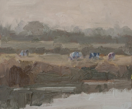 'Cows grazing at dusk',oil on board, 10inches x 12inches, £1050.JPG
