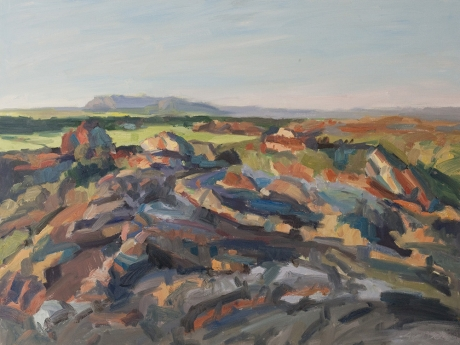 'Kakadu escarpment, Australia', oil on canvas, 36inches x 48inches, £6000.JPG