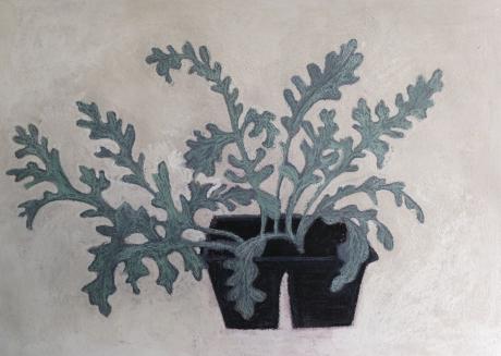 A'Court-Angela-Bedding Plants.jpg