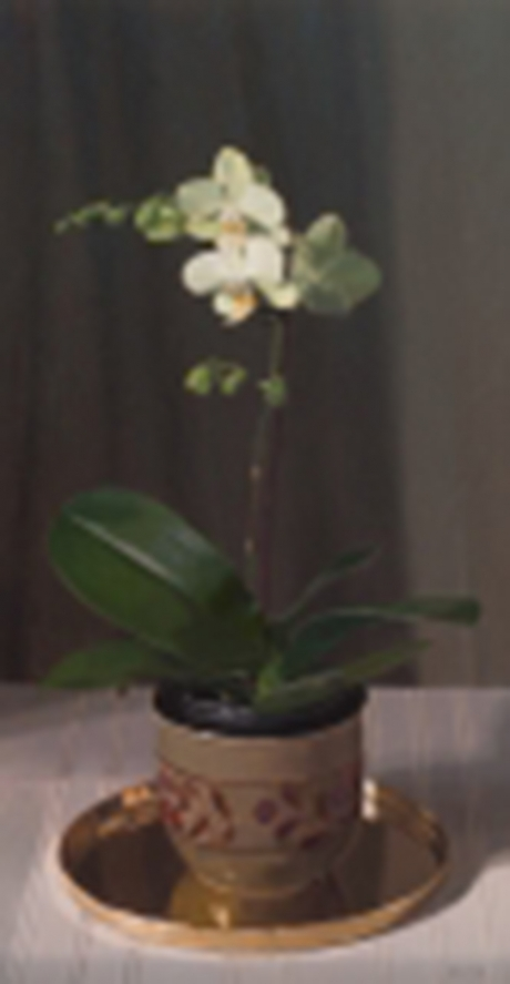 Orchid and Brass Tray_S.jpg