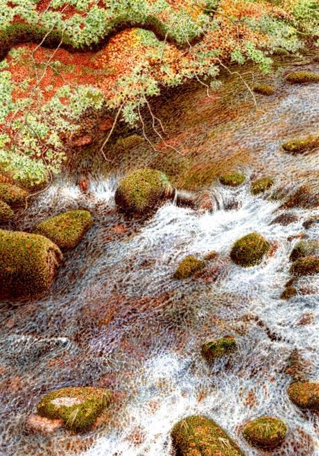 Styles-Ray-October-River-Walkham-Dartmoor.jpg