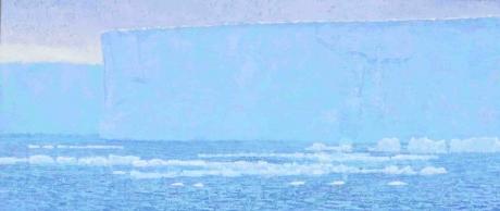 'Belugas and Ice Shelf, Svalbard' acrylic painting by Darren Rees