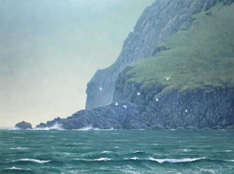 Stock-RE-SWLA-Andrew-Sandwich-terns.jpg
