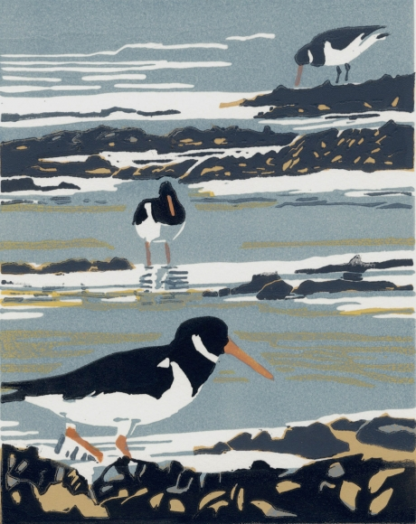 """""""Resting with Oystercatchers"""" Linocut Print by Max Angus"""