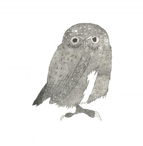 owlcard rgb.jpg